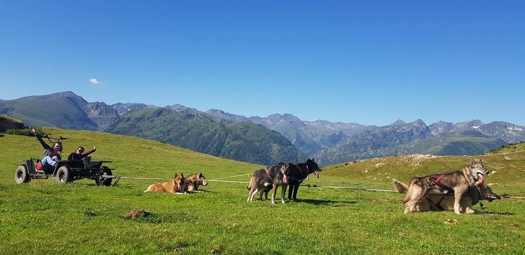 Cani-Rando, randonnée avec chien